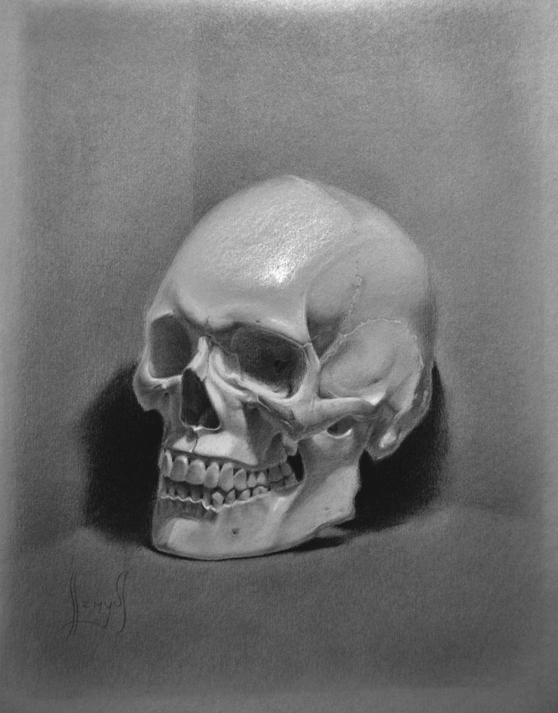 Skull contrast up2